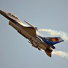 Belgian Air Force F-16 Falcon(350th Squadron) by Andy Jordan