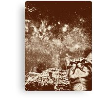 Eyes to the sky Canvas Print