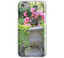 Overflowing Urn iPhone Case/Skin
