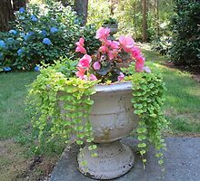 Overflowing Urn by Pat Yager