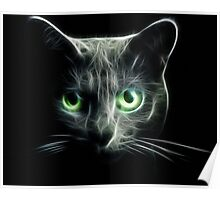 Kitty Cat eyes glow in the Dark Poster