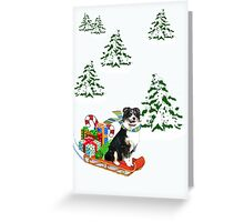 Black Tri Aussie on a Sled Greeting Card