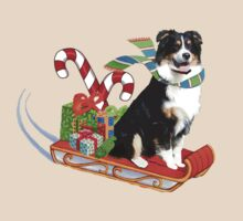 Black Tri Aussie on a Sled by Barbara Applegate