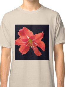 Scarlet Lily on Black Background Classic T-Shirt