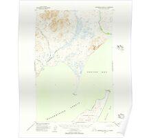 USGS TOPO Map Alaska AK Hagemeister Island D-3 355863 1948 63360 Poster
