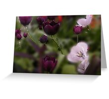 Hazy Tulips Greeting Card