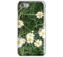 WILDFLOWERS IN THE OZARKS iPhone Case/Skin