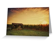 Vineyard Shed Greeting Card