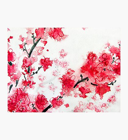 Cherry Blossoms II Photographic Print