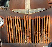 Rusty Old Ford by Vivian Sturdivant