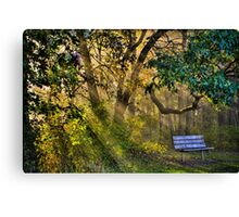 Empty Bench Early Morning Canvas Print