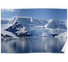 Glaciers in Antarctica Poster