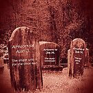 """""""Bubble Hill Cemetery, an Inside View""""... prints and products by © Bob Hall"""