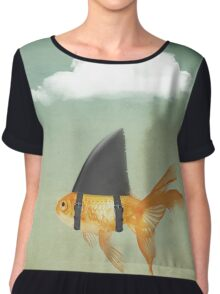 Under a Cloud, Goldfish with a Shark fin Chiffon Top