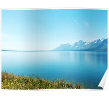 Landscape photography, lake, blue sky and wild plants. Grand Teton National Park. Poster