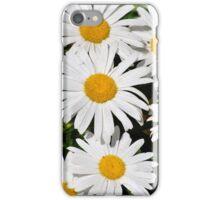 Margaritas iPhone Case/Skin