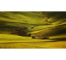 Green Toskany Photographic Print