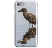 Small heron iPhone Case/Skin