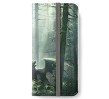 Story iPhone Wallet/Case/Skin