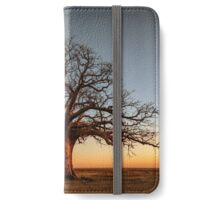 Farewell to the Day iPhone Wallet/Case/Skin