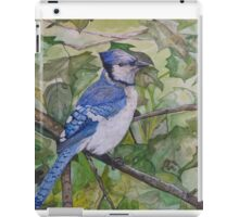 BLUE JAY - water color. iPad Case/Skin