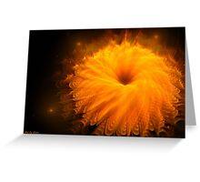 Beautiful orange flower Greeting Card