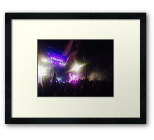 Firefly Music Festival Framed Print