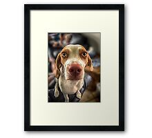 Bacon? Framed Print