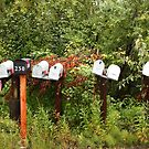 Mail boxes by zumi
