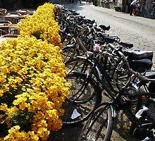 Bikes at Brugge (Bruges), Belgium by bubblehex08