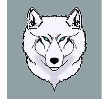 Blue eyes snow wolf Photographic Print