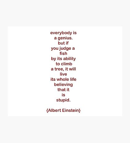 everybody is a genius. -albert einstein Photographic Print