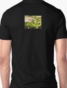 Lily-pad Frog Unisex T-Shirt