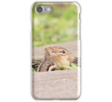 Stepping Stone Chipmunk iPhone Case/Skin