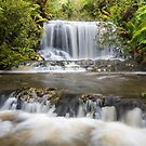 Albert River Falls - 4th tier by Travis Easton