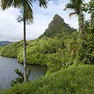 Takaiuh - Pohnpei Island, Micronesia by Alex Zuccarelli
