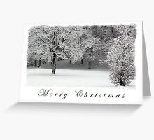 Snow and Trees Merry Christmas  Greeting Card