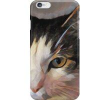 MeiMei Miao Portrait Of a Fat Cat iPhone Case/Skin