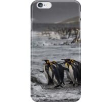 King Penguin Beach - South Georgia iPhone Case/Skin