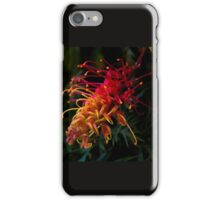 Australian grevillea iPhone Case/Skin
