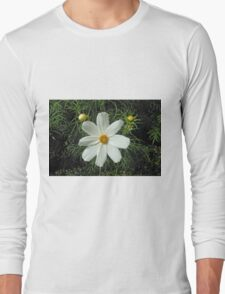 Pretty White Cosmos Flower and Buds Long Sleeve T-Shirt