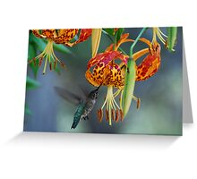 Humming Tiger Greeting Card