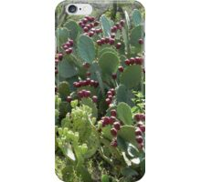 """Prickly Pear With """"Tunas"""" or Fruit iPhone Case/Skin"""
