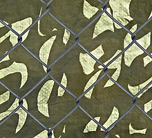 Camouflage  © by Ethna Gillespie