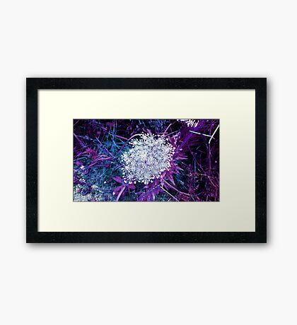 Blue Purple Framed Print