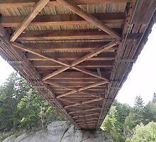 Under the Covered Bridge by Martha Medford
