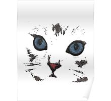 sweet cat face Poster