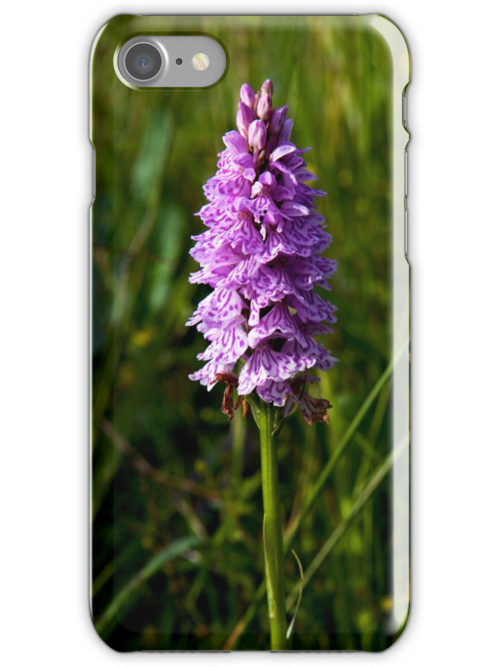 Spotted Orchid,  Donegal as iPhone case by George Row
