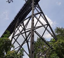 Train trestle by vigor