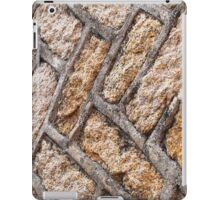 Alley Wall  iPad Case/Skin